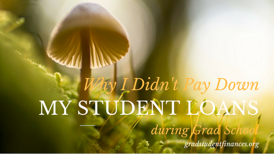 I didn't pay down my student loans during grad school